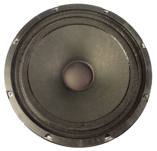 "10"" Woofer for E160P"