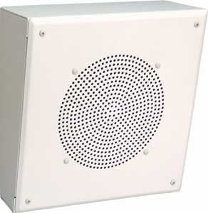 "Metal Box Speaker, 8"", Downward Angle for Wall Mounting"