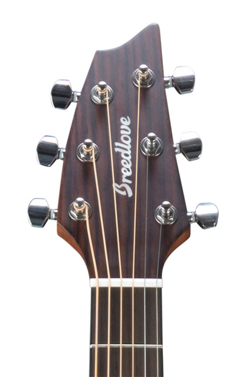 Acoustic-Electric Guitar with Mahogany Back and Sides
