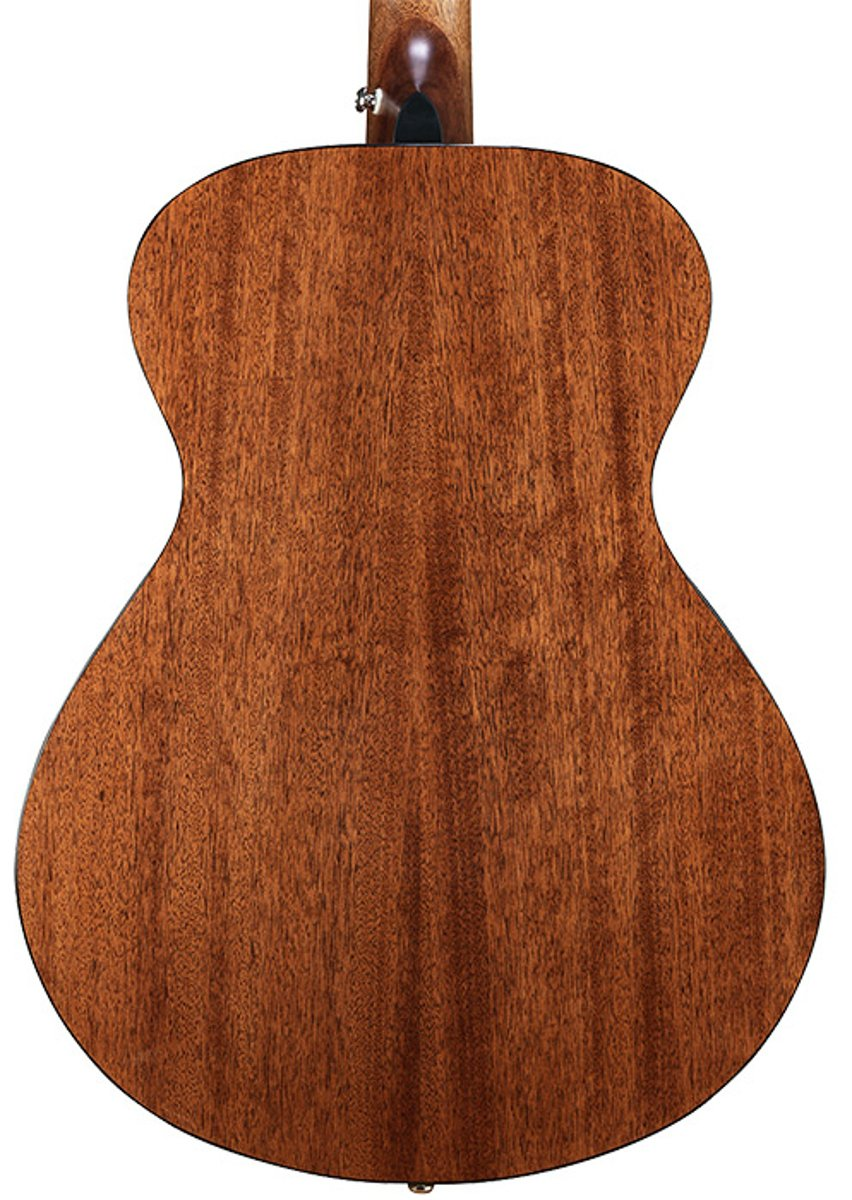 Acoustic Guitar with Mahogany Back and Sides