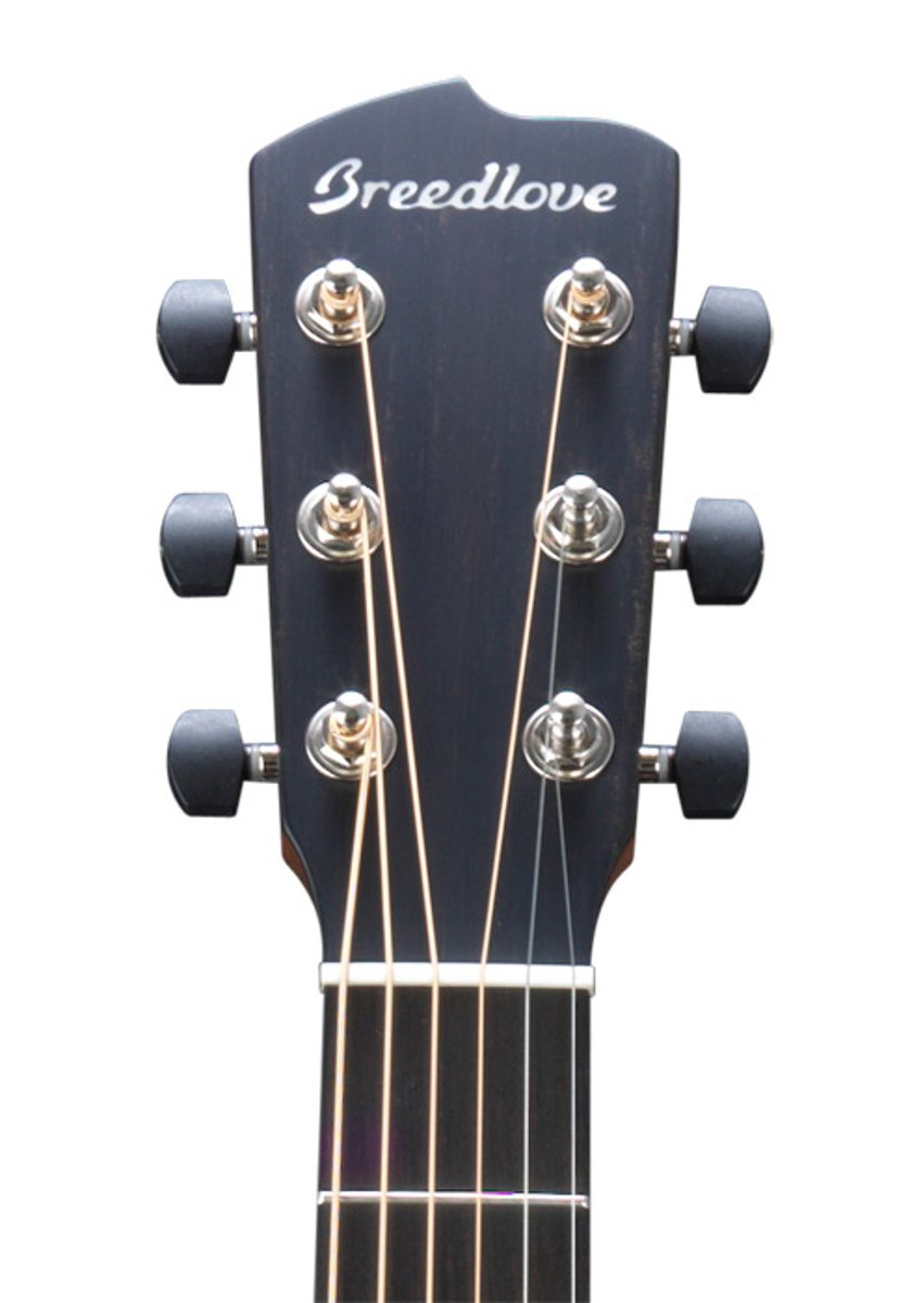 Acoustic-Electric Parlor Guitar