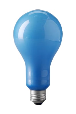 Blue Frosted Bulb
