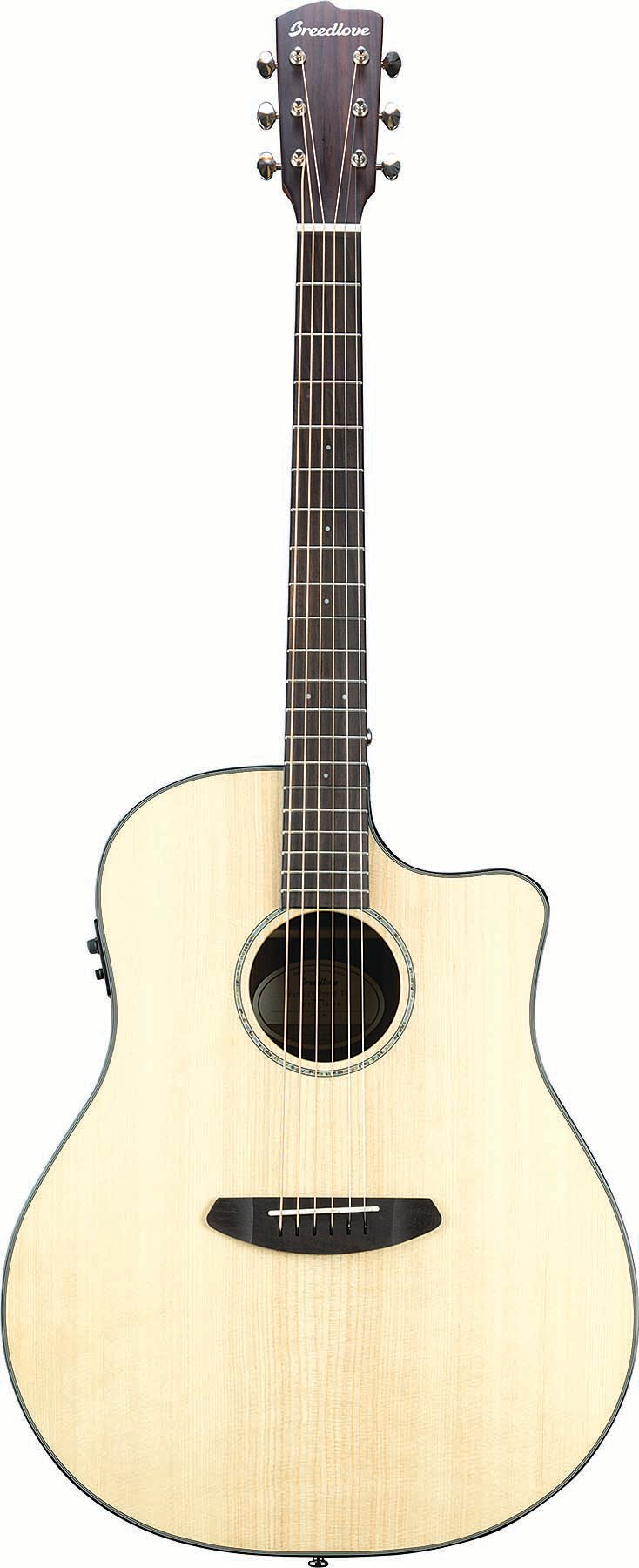 Acoustic Guitar with Ebony Back and Sides
