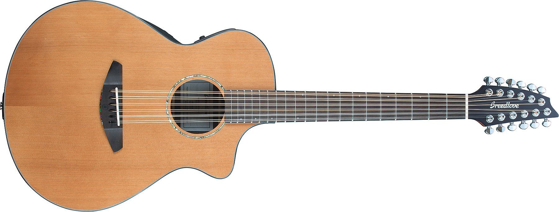Solo 12-String Acoustic-Electric Guitar