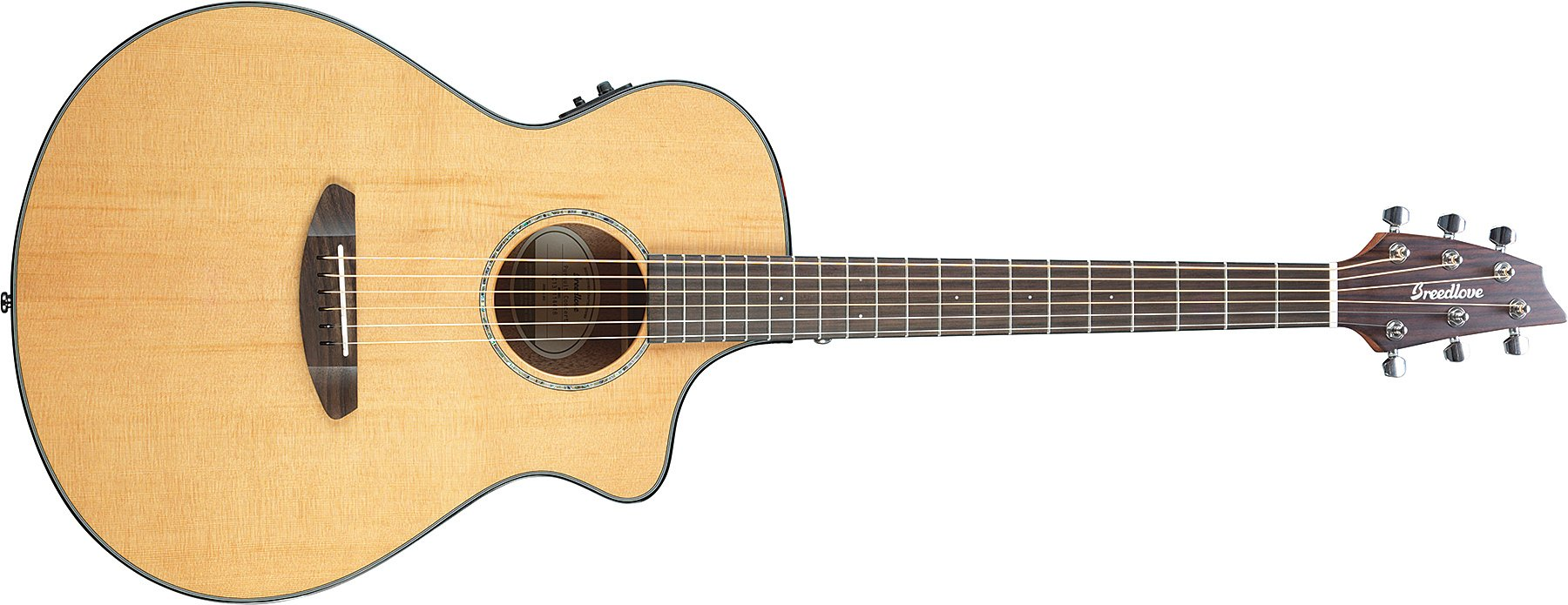 Acoustic-Electric Guitar