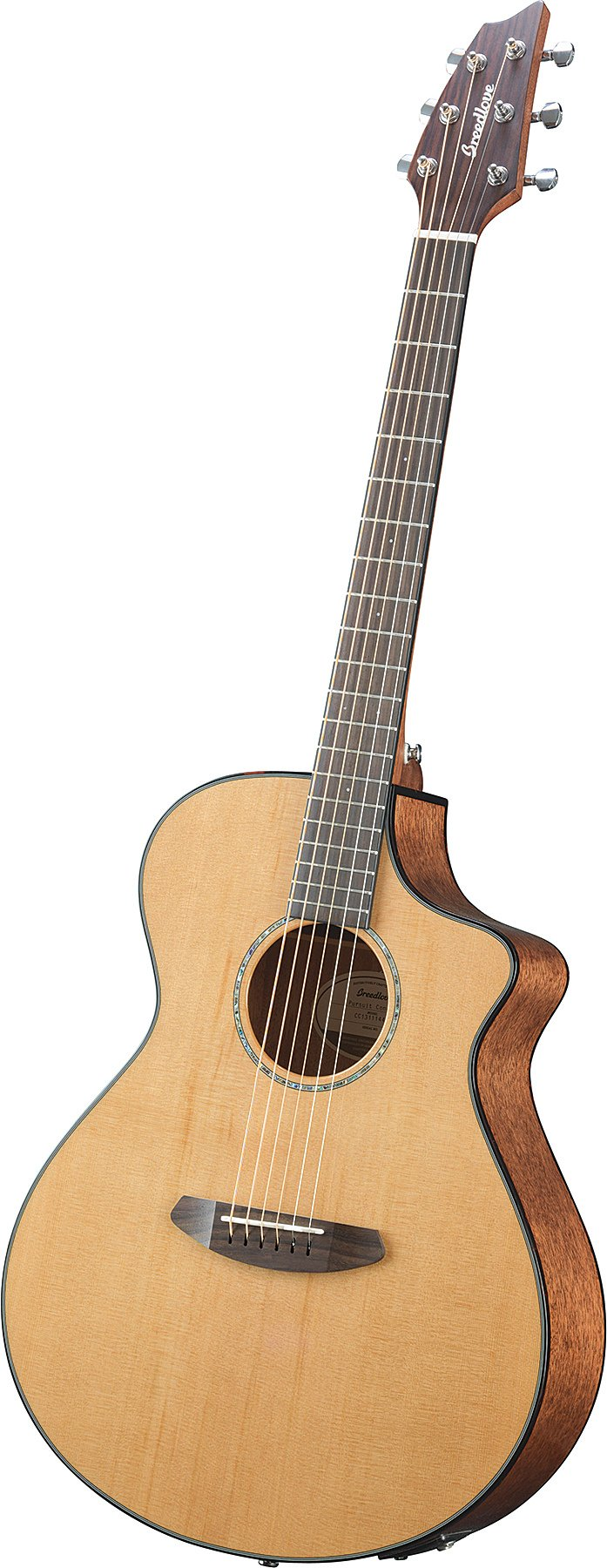 Acoustic-Electric Guitar