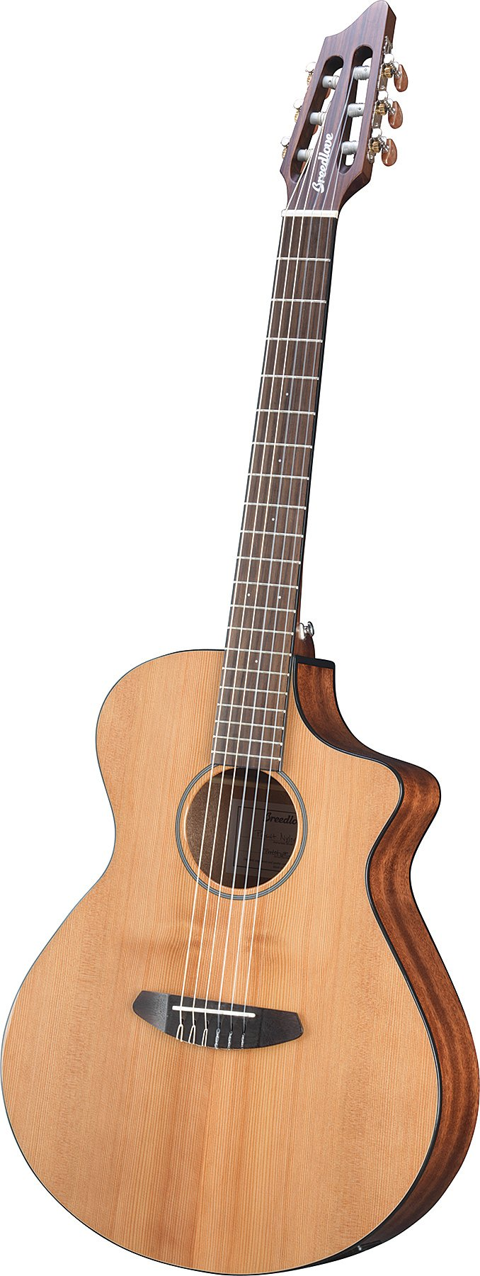 Nylon-String Acoustic-Electric Guitar
