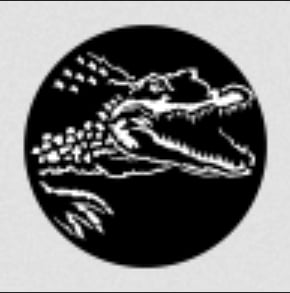 Africa Crocodile Steel Gobo