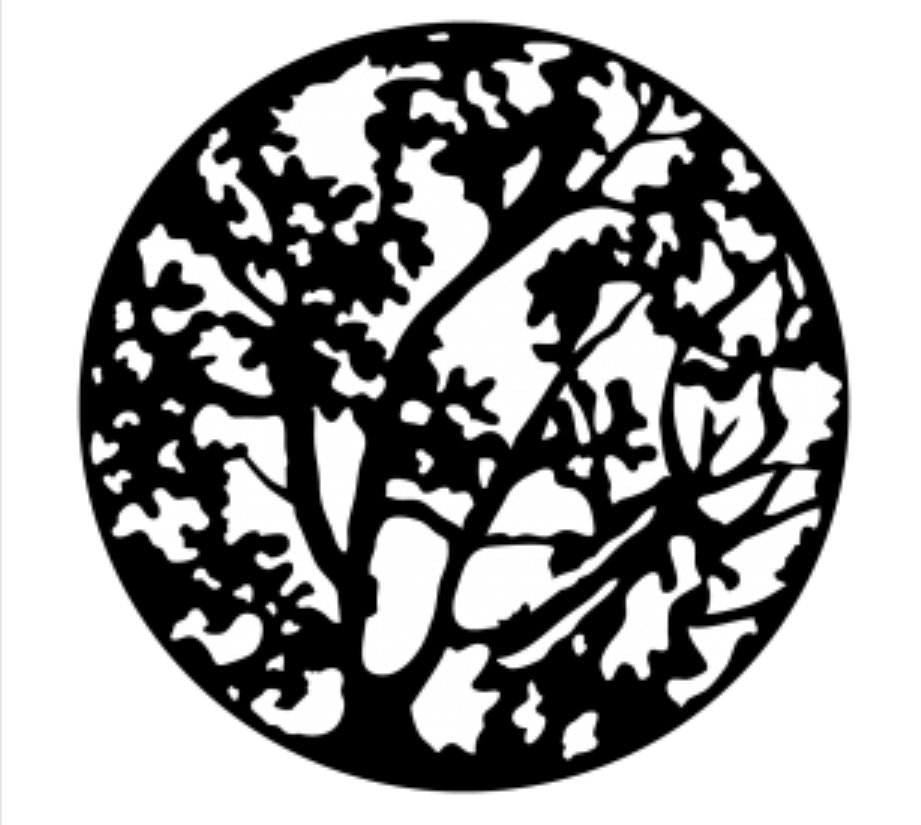 Spring Branches Steel Gobo