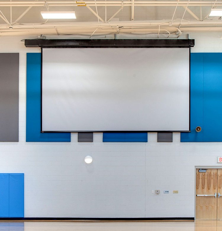Draper Shade and Screen 115384  Rolleramic Electric Projection Screen 115384