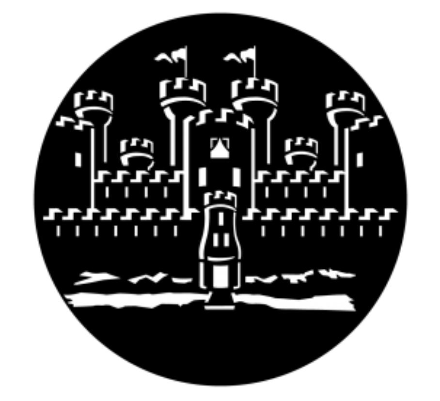 Castle Closeup Steel Gobo