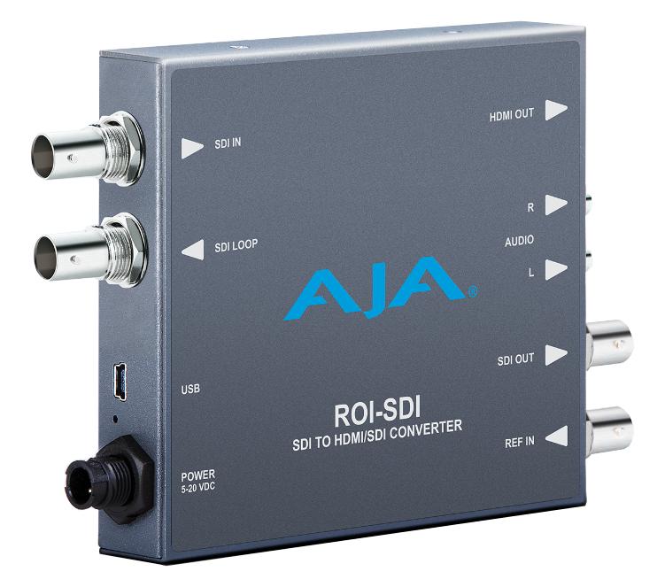 DVI/HDMI to SDI with ROI Scaling