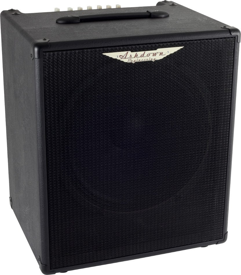 "220W 1x15"" Bass Combo Amplifier"