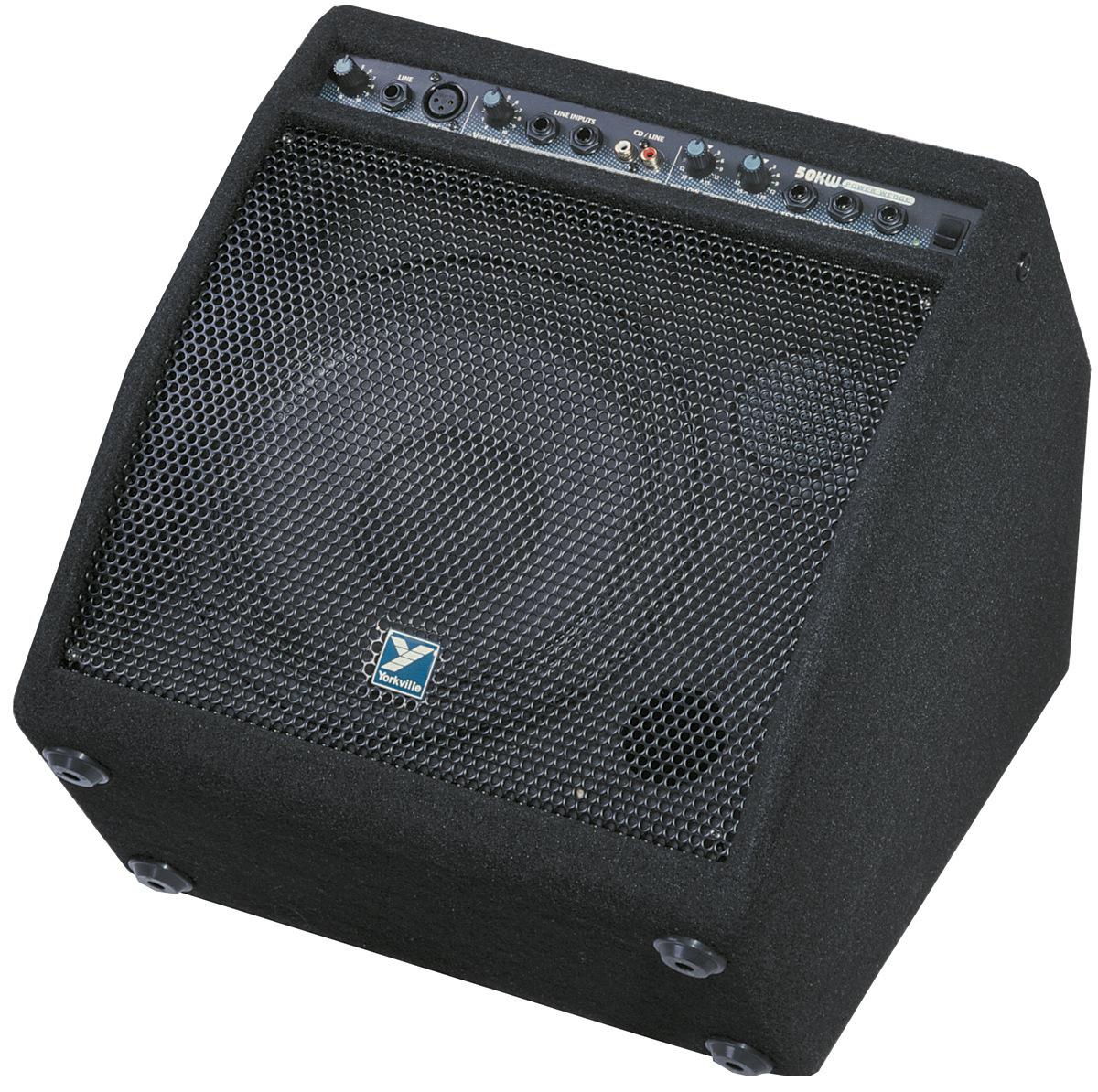 "50W Amp, 10"" Floor Monitor"