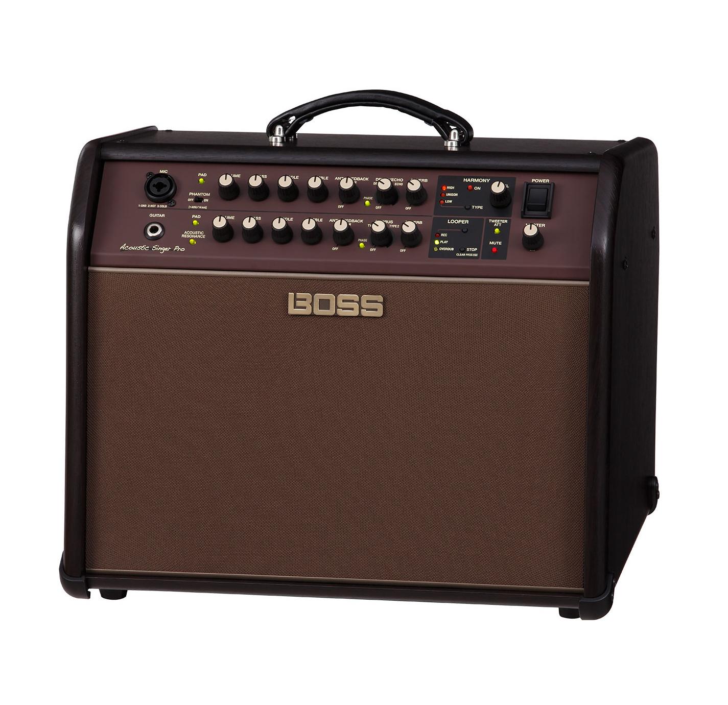 Acoustic Singer Pro 120W Acoustic Amp