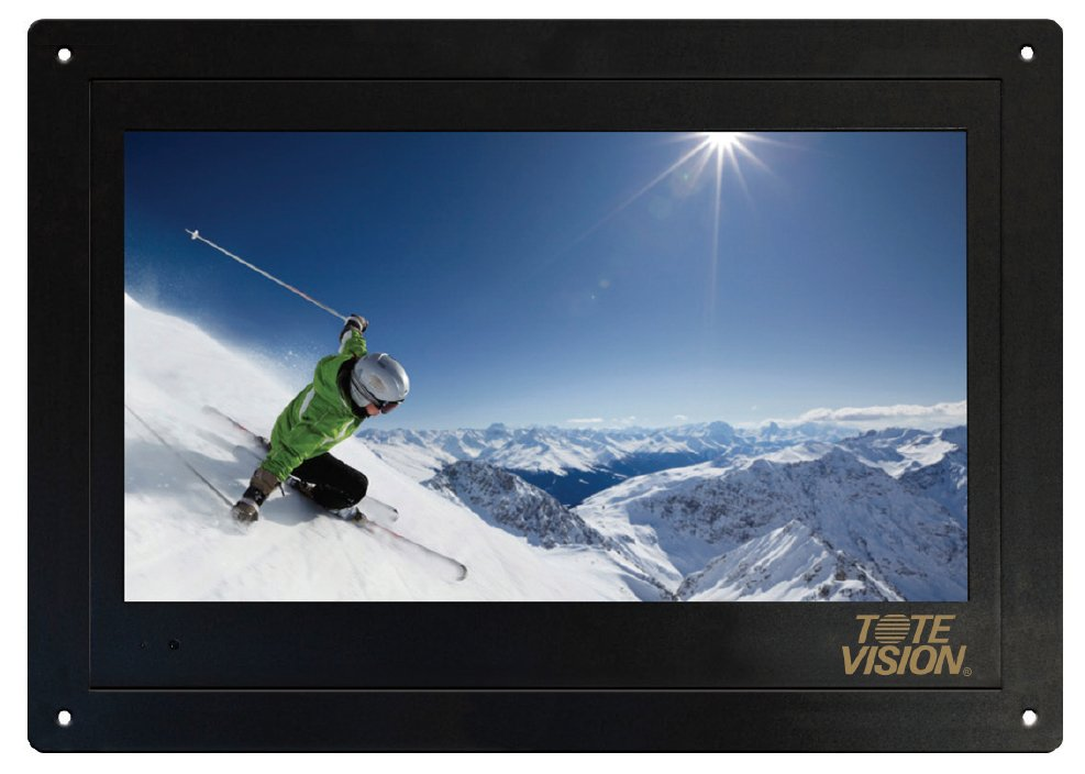 """19"""" Flush-Mount LCD Monitor/TV with No Front Controls"""