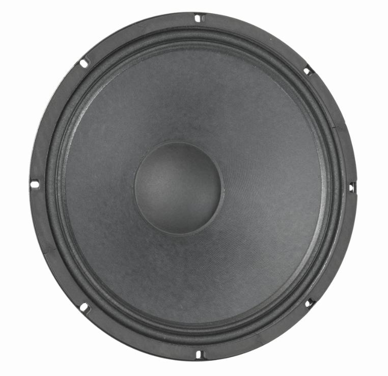 "15"" Bass Guitar Speaker"