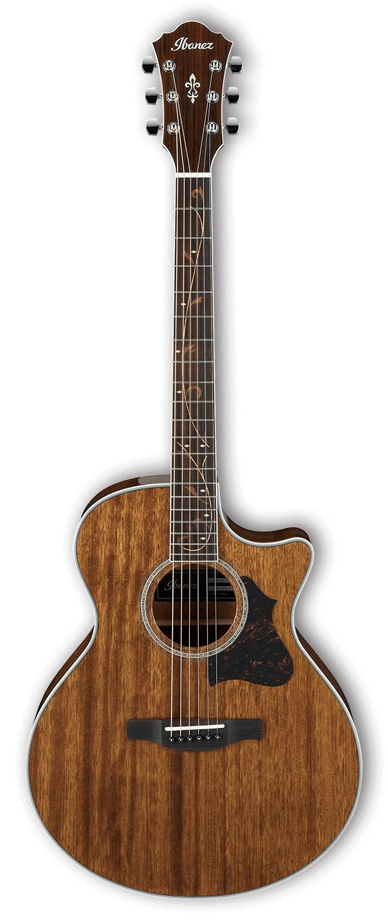 Ibanez AE245 Acoustic Electric Guitar - Natural High Gloss AE245NT