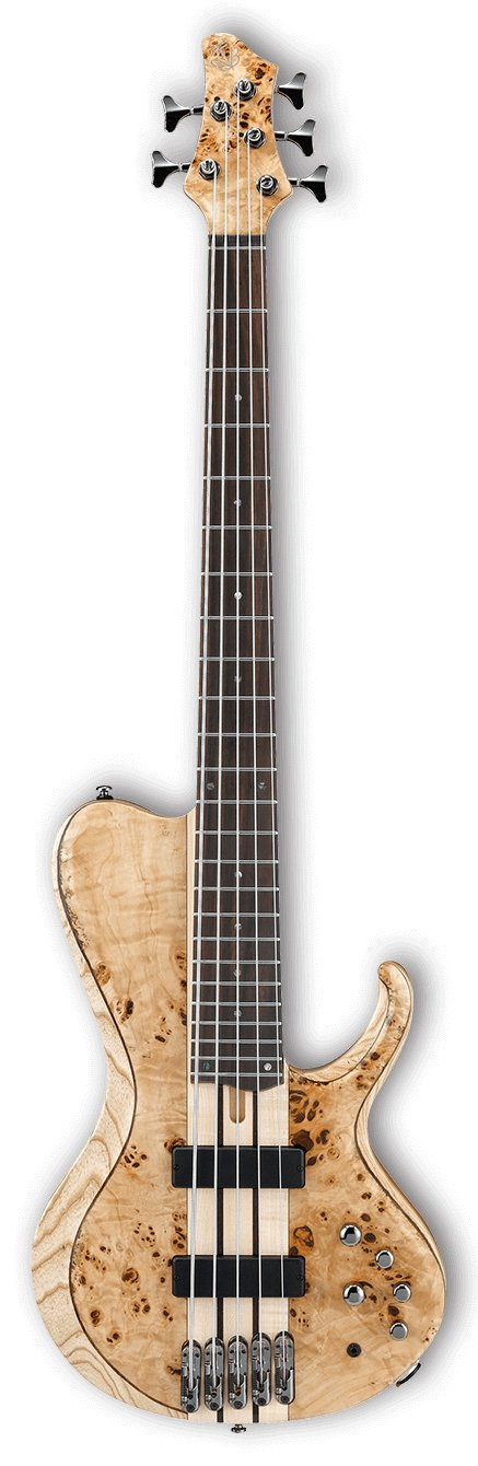 Bass Workshop 5-String Electric Bass - Natural Low Gloss