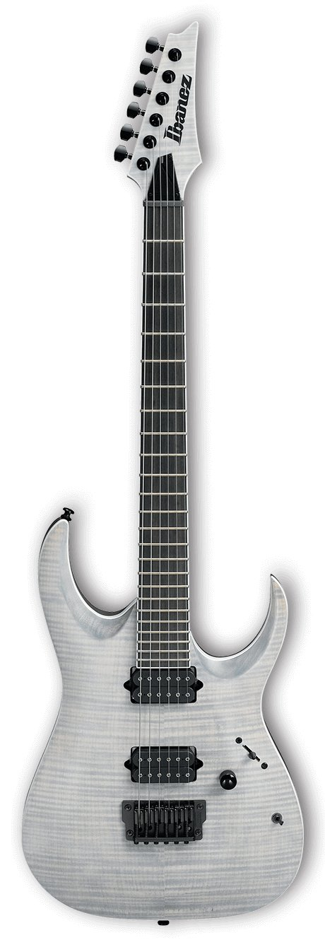 RGA Iron Label 6-String Electric Guitar - White Frost Flat