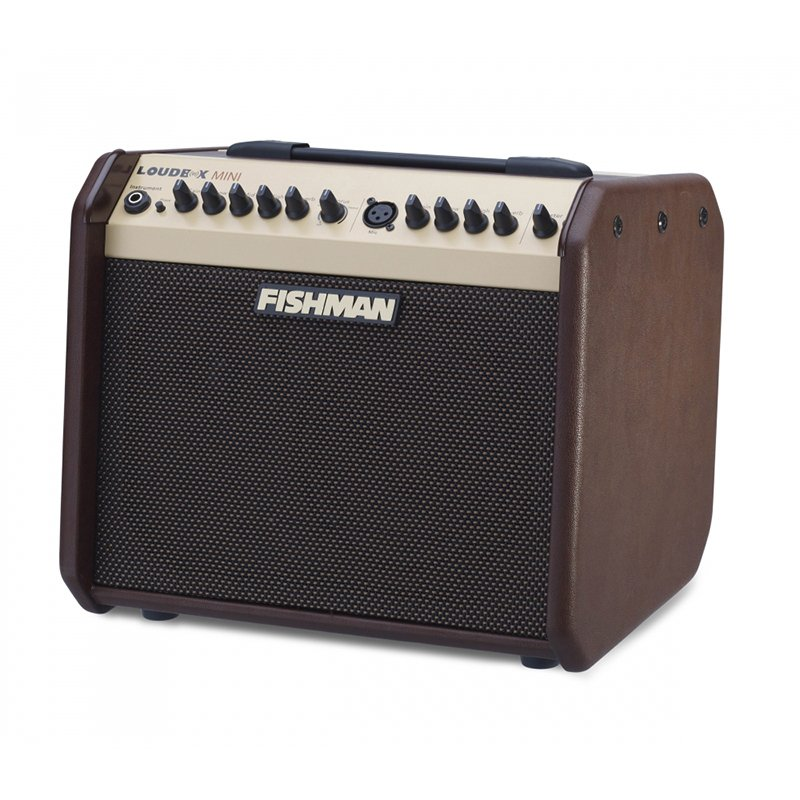 2-Ch 60W Acoustic Guitar Amplifier