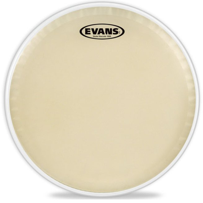 """Evans CT14SS 14"""" Strata Staccato 1000 Snare Batter Drum Head CT14SS"""