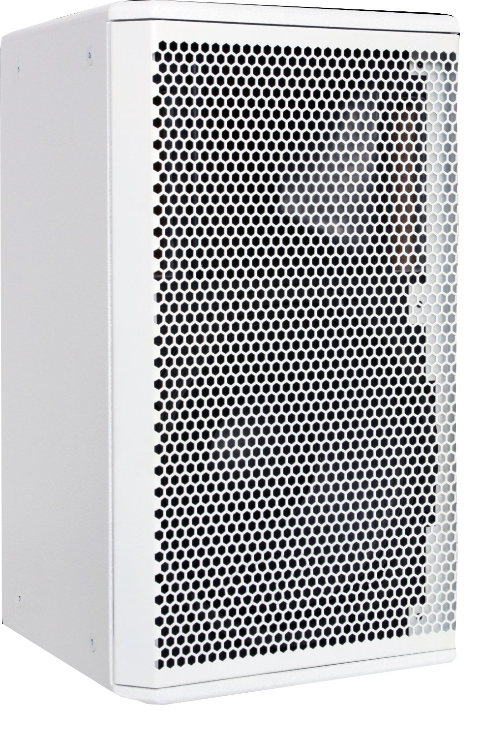"Core 12 Two-Way 12"" Speaker in White"