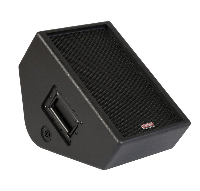 "10"" Passive Two-Way Full-Range Stage Monitor, Black"