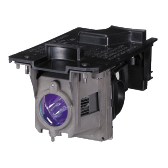 Replacement Lamp for NP Series