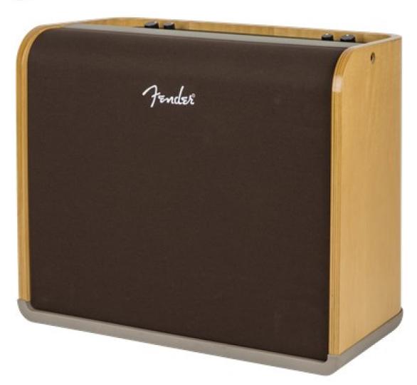 """12"""" 2-Channel Acoustic Guitar Amplifier"""