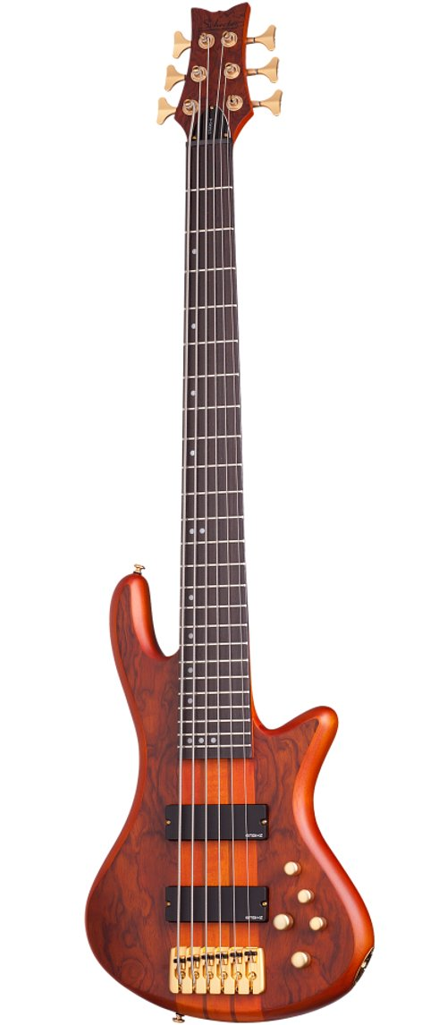 6-String Bass Guitar