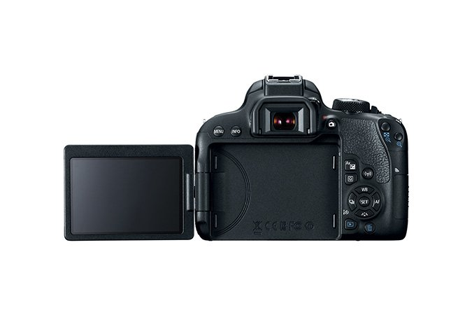 24.2MP APS-C DSLR with18-135mm Zoom Lens