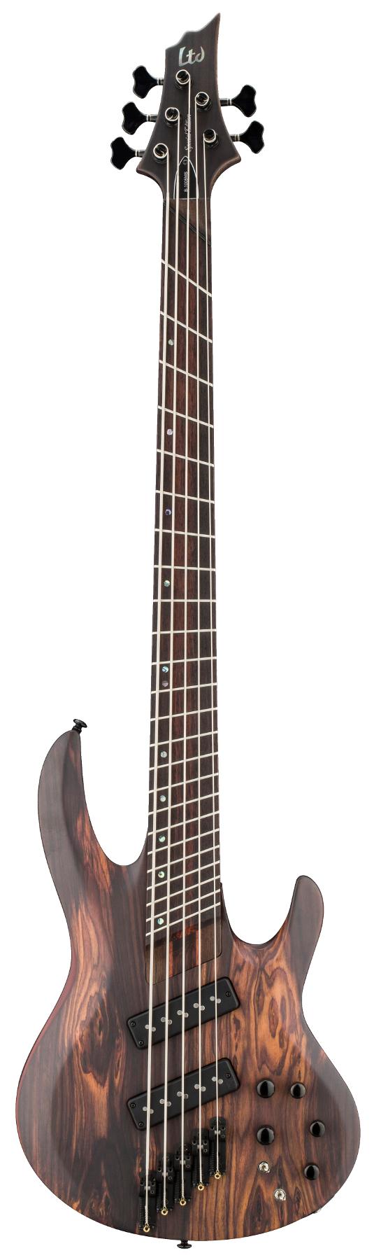 5-String Electric Bass Guitar, Natural Satin