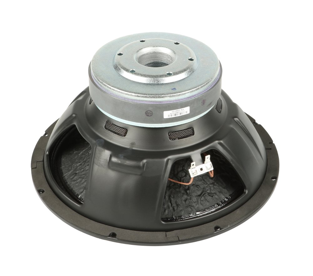 "12"" Woofer for DLM12S"