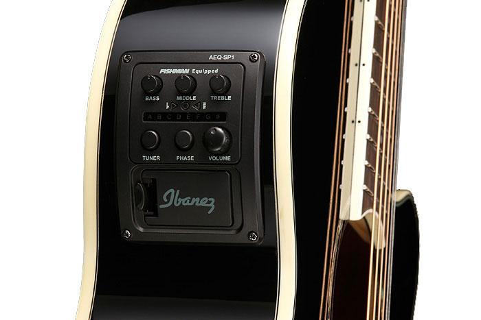 Ibanez AEG10II AEG Series Electric/Acoustic Guitar AEG10II