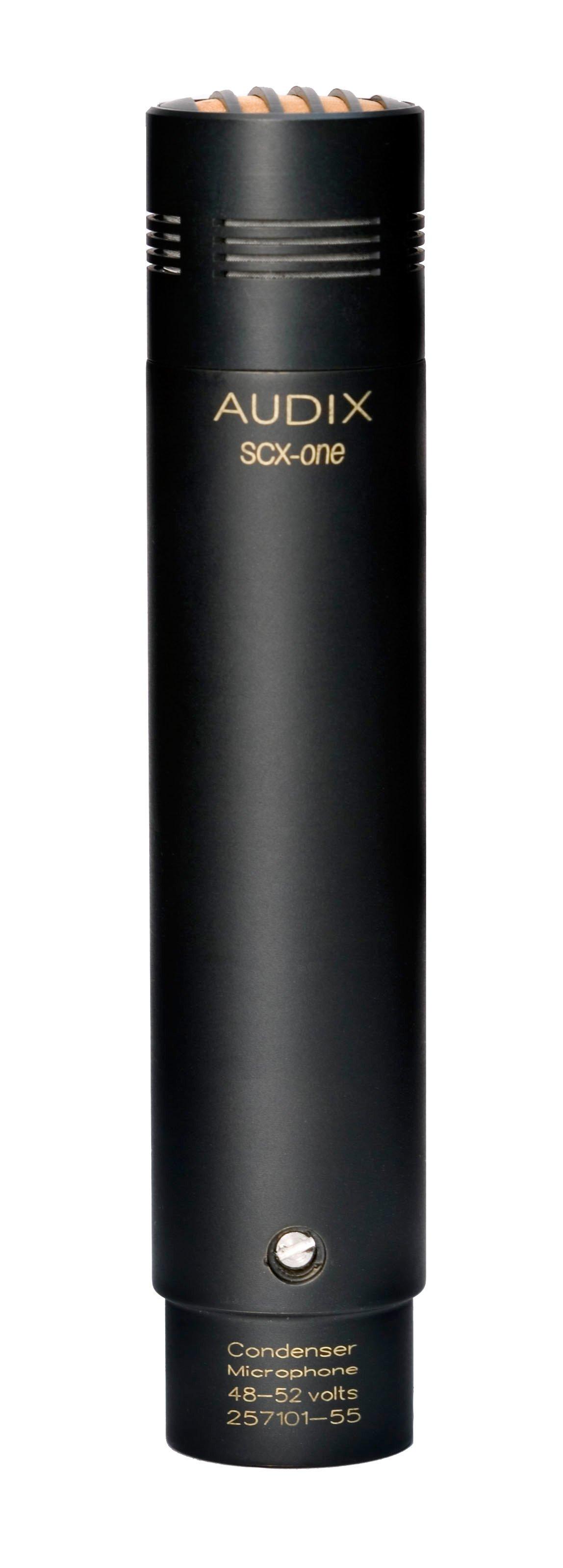 Modular Cardioid Condenser Microphone