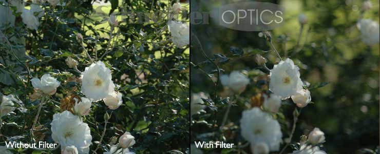Century Optics 65-072901 B+W Neutral Density Filter 65-072901