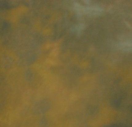 Background Collapsible 5x6 Bracken Brown