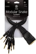 "Planet Waves PW-TRSB-01 Modular Snake Cable (8 Channel 1/4"" TRS Breakout to DB25 Connector) PW-TRSB-01"