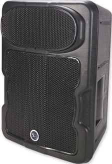 """12"""" 2-Way Speaker System"""