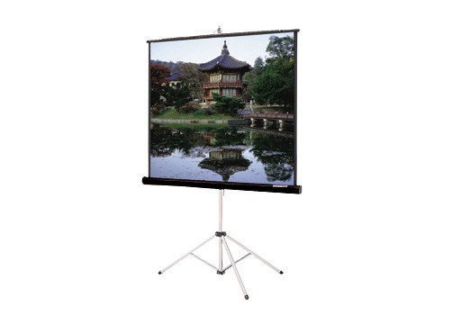 "Da-Lite 40141 84"" x 84"" Picture King® Matte White Screen with Keystone Eliminator 40141"