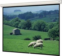 """123"""" x 164"""" Large Cosmopolitan Electrol® Matte White Screen"""