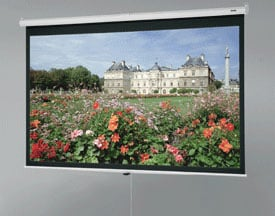 "70"" x 70"" Deluxe Model B® Matte White Screen"