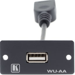 USB Wall Plate Insert (A/A)