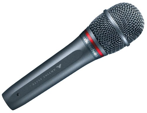 Audio-Technica AE6100 Handheld Dynamic Microphone, Hypercardioid AE6100