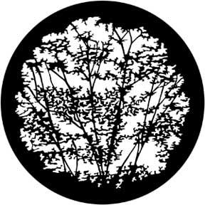 Rosco Laboratories 79106 Gobo Leafy Branches 79106