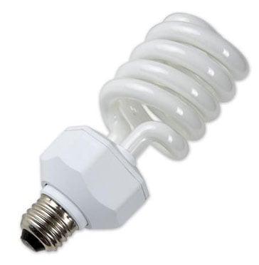 30W Lamp, Single, Daylight Fluorescent