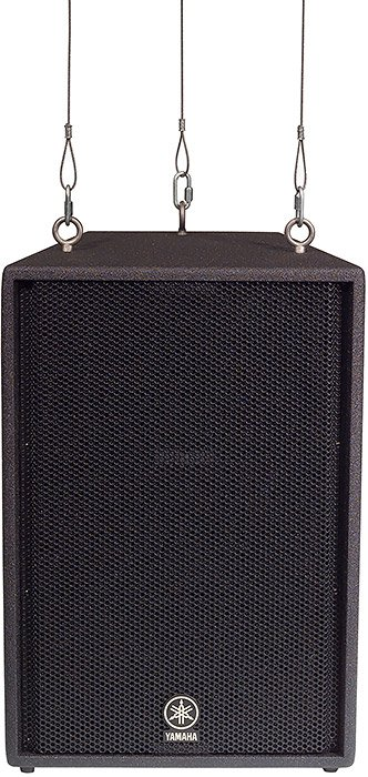 "15"" 2-Way Club V Series Flyable Speaker"