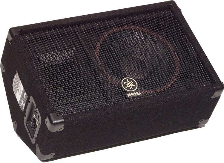 "Concert Club V Series 10"" 2-Way 500W Peak (8 Ohms) Floor Monitor"