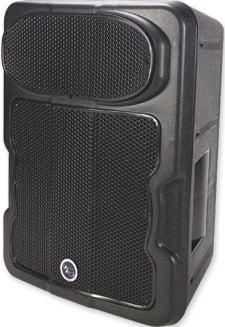 """10"""" 2-Way Speaker (Black)"""